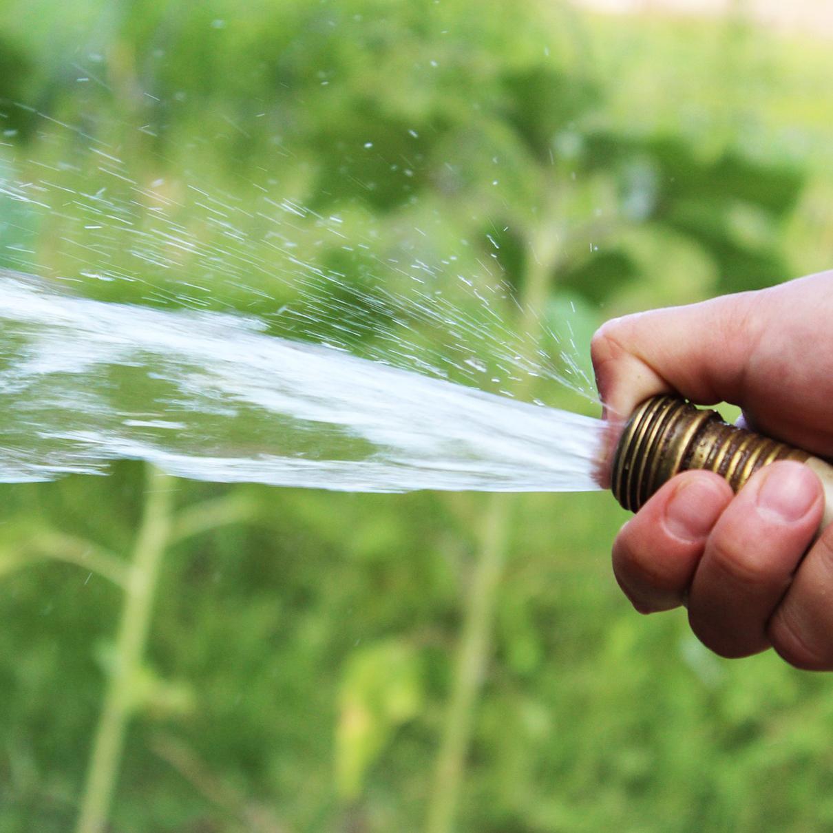 Hand hält Gartenschlauch und Sprüht Wasser auf Grünpflanzen